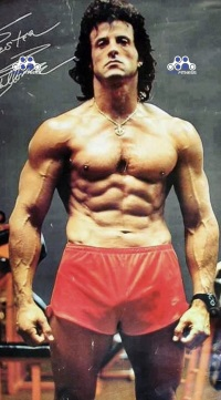 Sylvester Stallone Steroid Cycles