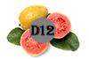 vitamin D12