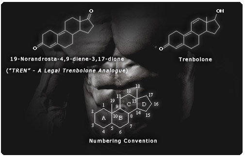 Trenbolone and TREN molecular structure comparison